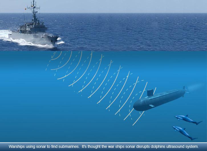 Hasil gambar untuk sonar